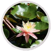Water Lilly With Dragonfly Round Beach Towel
