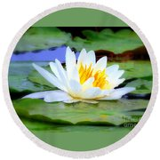 Water Lily - Digital Painting Round Beach Towel