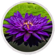Water Lily 15-2 Round Beach Towel