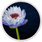 Water Lily #3 Round Beach Towel