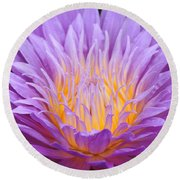 water lily 55 Ultraviolet Round Beach Towel