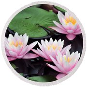 water lily 91 Sunny Pink Water Lily Round Beach Towel