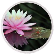 water lily 92 Sunny Pink Water Lily with Lily Pad Round Beach Towel