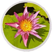 Water Lily After Rain 3 Round Beach Towel