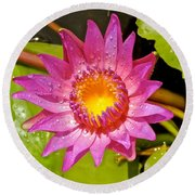 Water Lily After Rain 4 Round Beach Towel