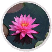 Water Lily - Afternoon Delight Round Beach Towel