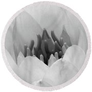 Water Lily - Burnin' Love 05 - Bw - Water Paper Round Beach Towel