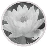 Water Lily - Burnin' Love 15 - Bw - Water Paper Round Beach Towel