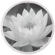 Water Lily - Burnin' Love 16 - Bw - Water Paper Round Beach Towel