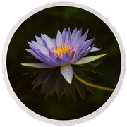 Water Lily Close Up Round Beach Towel