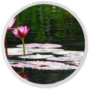 Water Lily Round Beach Towel
