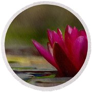 Water Lily - Id 16235-220248-4550 Round Beach Towel