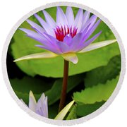 Water Lily In A Tropical Garden_4657 Round Beach Towel