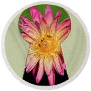 Water Lily Keyhole Round Beach Towel