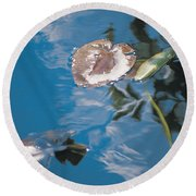 Water Lily Leaves And Reflection Of Clouds In Unknown Lake Round Beach Towel