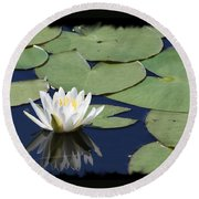 Water Lily With Black Border Round Beach Towel