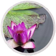 Water Lily With Rain Drops Round Beach Towel