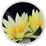Water Lily Yellow Nymphaea Round Beach Towel