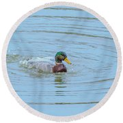 Water Off A Ducks Back Round Beach Towel