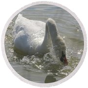 Water Off A Swan's Back Round Beach Towel