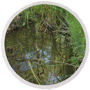 Water Pond Reflection In Peters Canyon Round Beach Towel