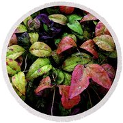 Watercolor Colorful Leaves After A Shower 1771 W_2 Round Beach Towel