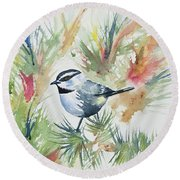 Watercolor - Mountain Chickadee And Pine Round Beach Towel