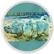 Watercolor Sheep Round Beach Towel