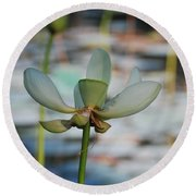 Waterlily Wash  Vertical Round Beach Towel