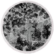 Waxleaf Privet Blooms On A Sunny Day In Black And White - Color Invert Round Beach Towel