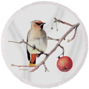 Waxwing Round Beach Towel