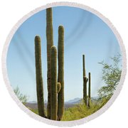 Weavers Needle Round Beach Towel