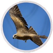 Wedgetail Eagle Flight Round Beach Towel