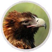 Wedge-tailed Eagle Round Beach Towel