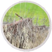 Weeds 008 Round Beach Towel