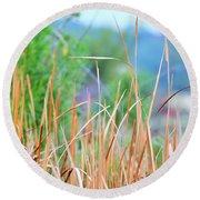 Weeds 033 Round Beach Towel