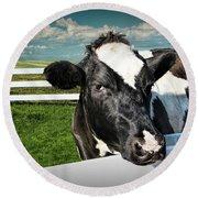 West Michigan Dairy Cow Round Beach Towel
