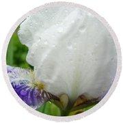 Wet Flower Raindrops Art Iris Flower Spring Baslee Troutman Round Beach Towel