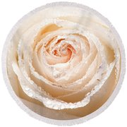Wet White Rose Round Beach Towel