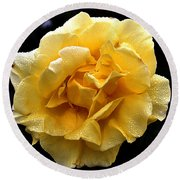 Wet Yellow Rose II Round Beach Towel