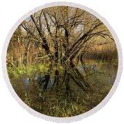 Wetlands Mirror Reflection Round Beach Towel
