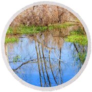 Wetlands Viewing Area In Chatfield State Park Round Beach Towel