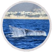Whale Tail In Cabo Round Beach Towel