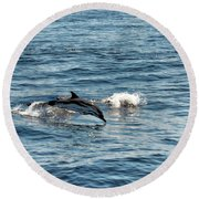 Whale Watching And Dolphins 1 Round Beach Towel
