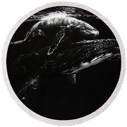Whales Round Beach Towel