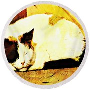 What Do Cats Dream Of Round Beach Towel