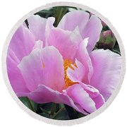 What's In A Name - Bowl Of Beauty Peony Round Beach Towel