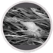 Wheat And Ice Round Beach Towel
