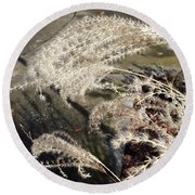 Wheat Feathers Round Beach Towel