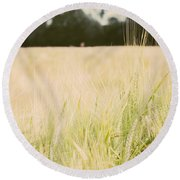 Wheat Field Closeup Round Beach Towel